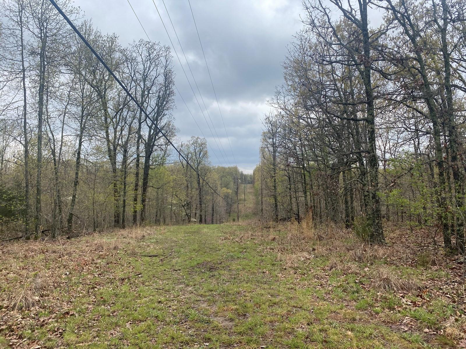 Land for sale Camden County MO