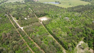 EAST TX TIMBER LAND FOR SALE SMITH COUNTY HUNT & RECREATION