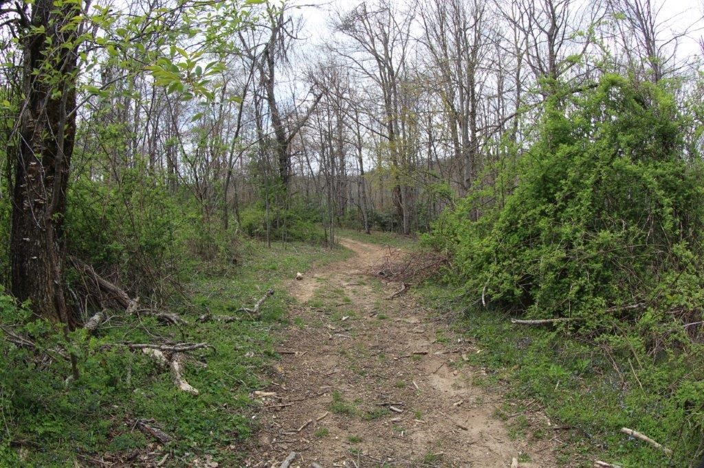 7.88 ACRES OF LAND FOR SELL IN PATRICK COUNTY, VIRGINIA