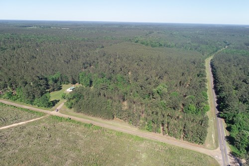 Large Timberland W/ Camp Site for sale near Emerson, AR