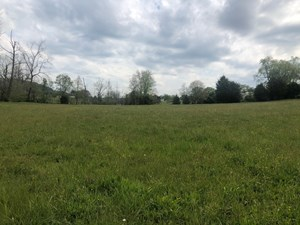 .81 ACRES COUNTRY SETTING LAND FOR SALE IN EAST TN