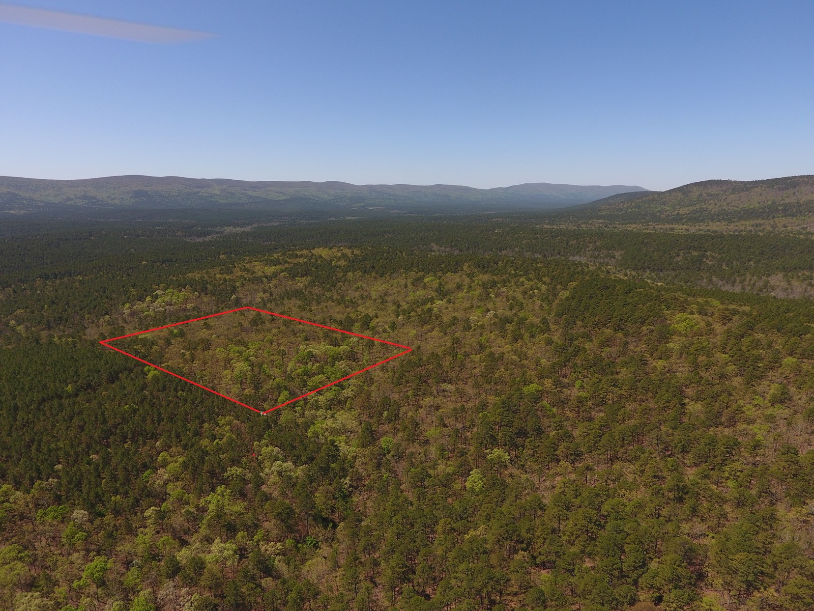 Blue Mountain 6.6 Acres Adjoining National Forest