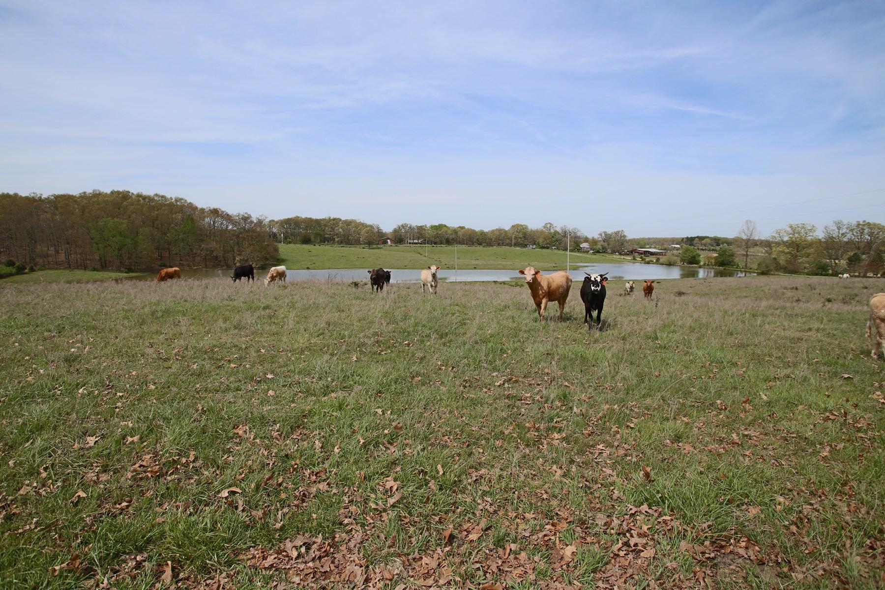 Ozark Hobby Farm with Lake and Lush Pasture!