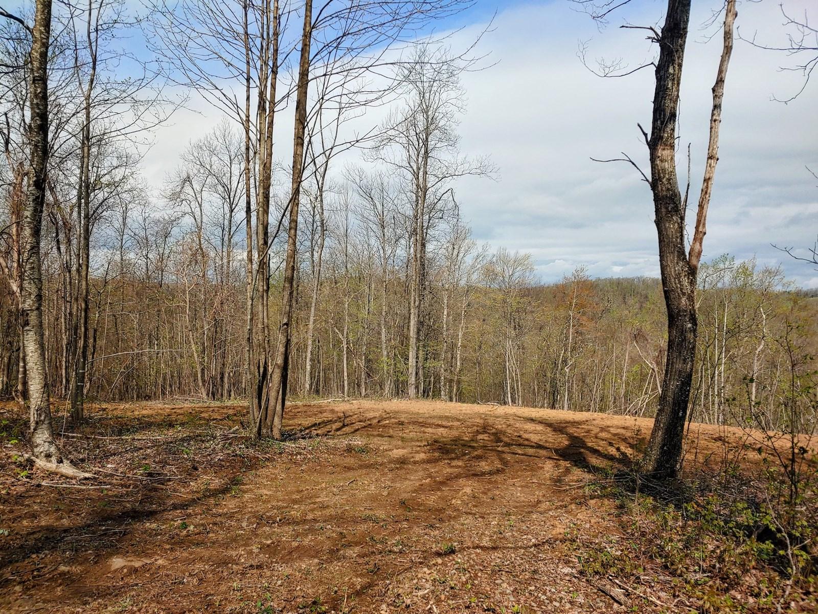 Land for Sale in Callaway VA!