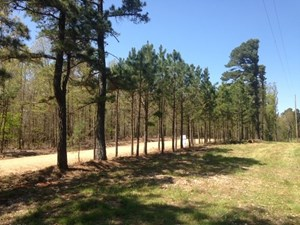 LAND JOINS STATE PARK FOR SALE IN ARKANSAS
