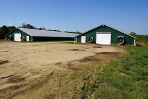 POULTRY FARM IN FAIRMONT, NC