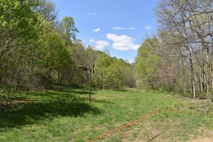 RECREATIONAL LAND BORDERS MARTIN STATE FOREST W/RIVER ACCESS
