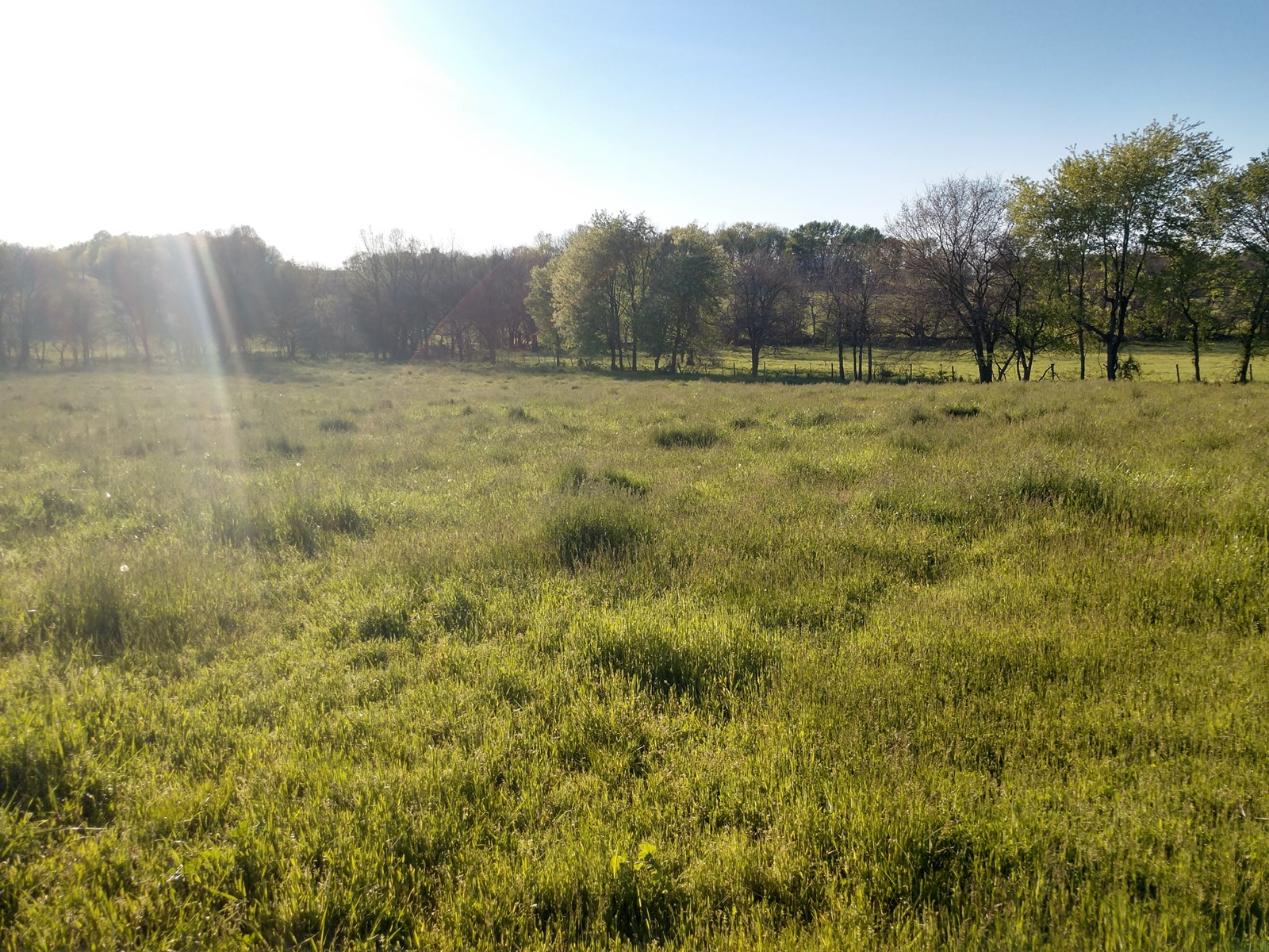 5 Acre Building Site with