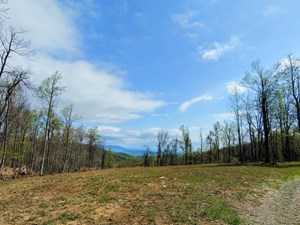 SECLUDED LAND FOR SALE IN CALLAWAY VA