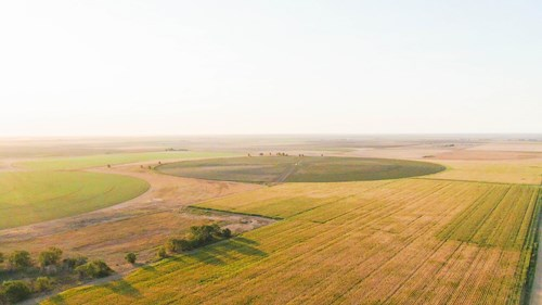 Irrigated Opportunity In Northern Lamb County