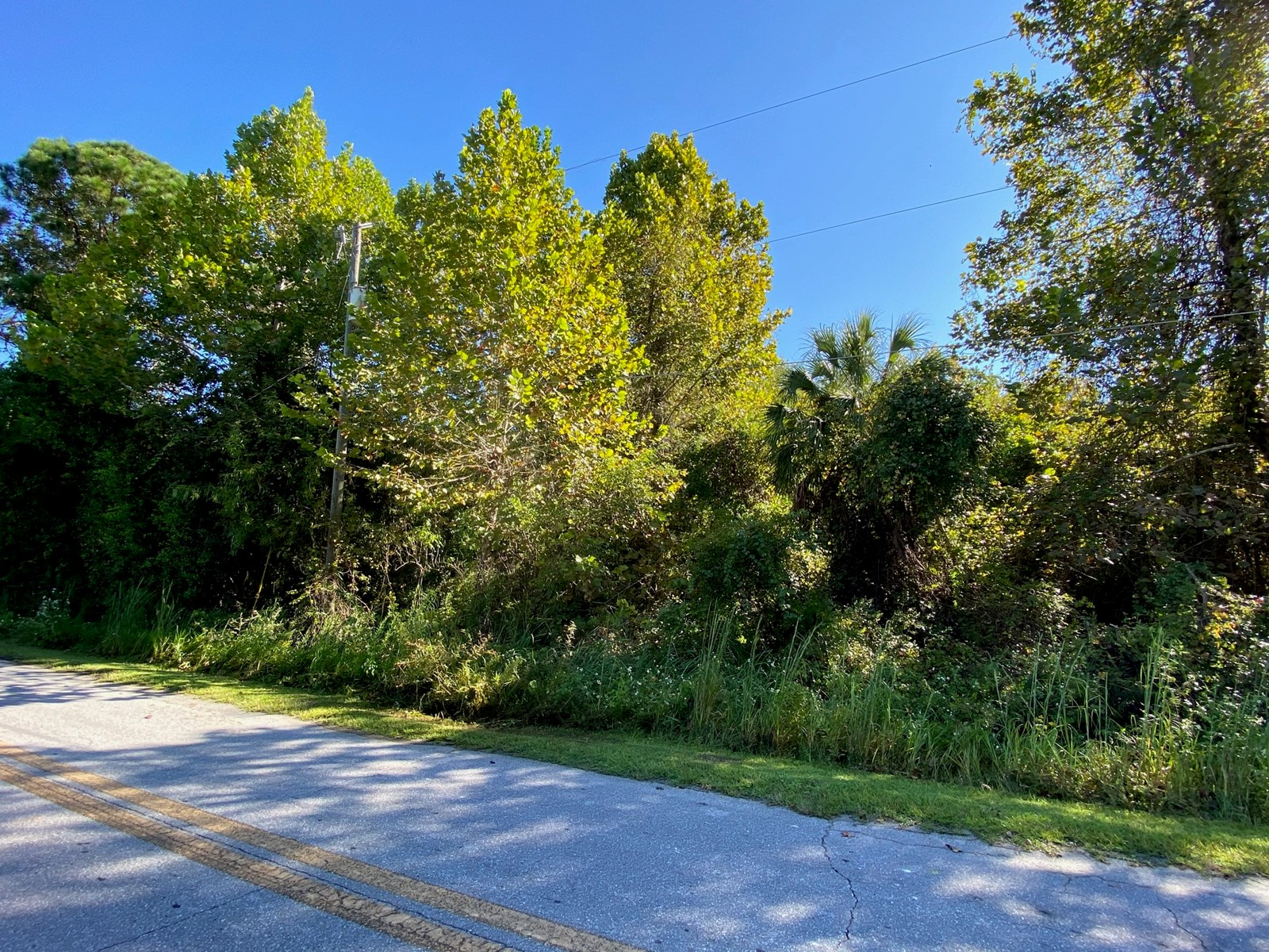 COMMERCIAL LAND IN LAKE CITY FLORIDA