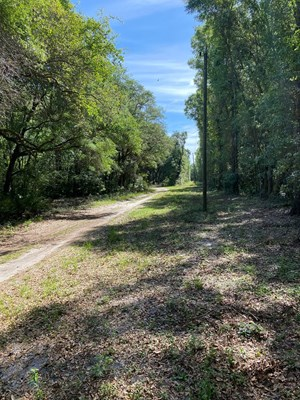 RIVER SUBDIVISION LOT FOR ONLY $15,000!