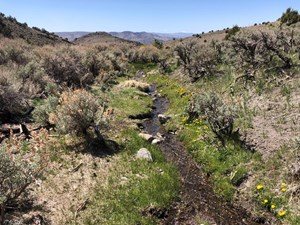 NEVADA RANCH HORSE MOUNTAIN RECREATIONAL PROPERTY FOR SALE