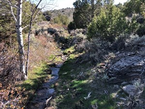 NEVADA RESIDENTIAL HUNTING MOUNTAIN HORSE PROPERTY FOR SALE