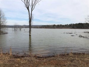 GREERS FERRY LAKE AREA LAND FOR SALE