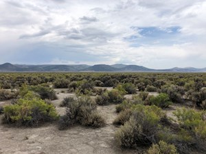 NEVADA RECREATIONAL RANCH HUNTING LAND FOR SALE WASHOE CO