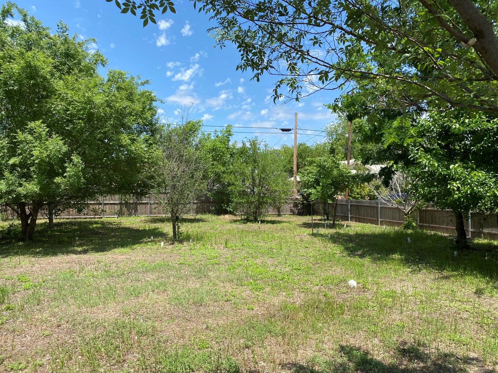 Residential Lot For Sale Gatesville TX Lots of Trees