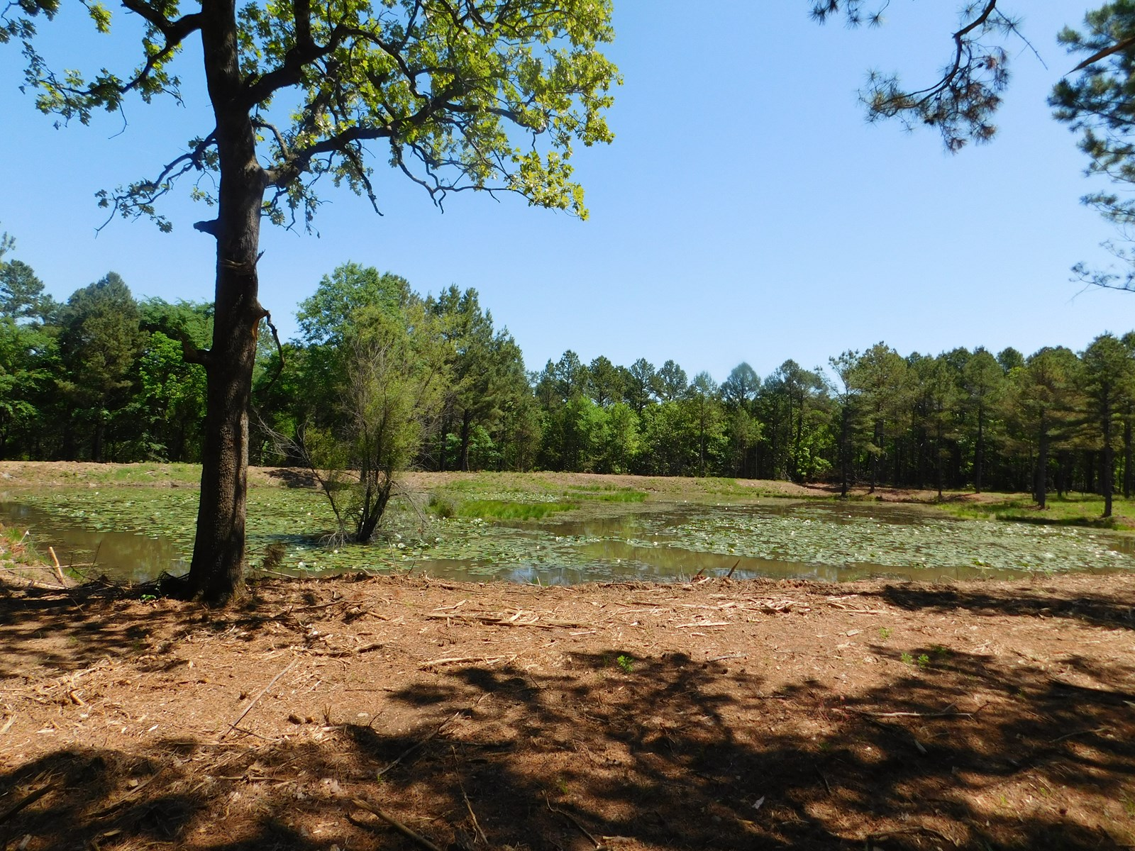 BUILDING SITE, POND, COUNTRY LIVING