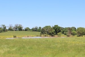 62 ACRES EAST TEXAS LAND WOOD COUNTY OLD DAIRY 2 PONDS