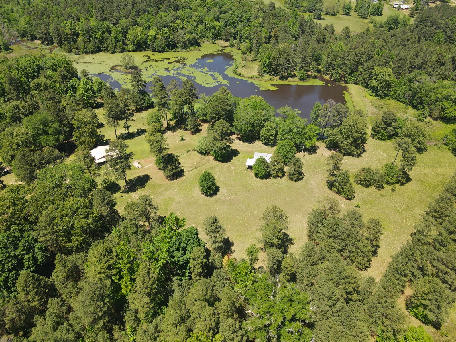 East Texas Ranch Lake Hunting Property for Sale, Cass Co, TX