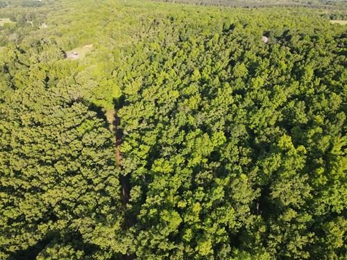 Lot for sale in Faulkner County, Arkansas