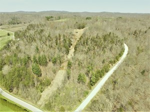 21.38 ACRES VACANT LAND BUILDING SITE HUNTING