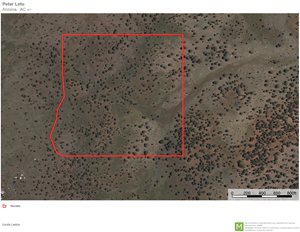 HUNTING--RECREATIONAL--RURAL--OFF GRID LIVING OVER 41 ACRES
