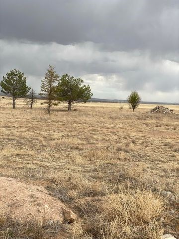 Estancia Valley New Mexico Land for Sale with Utilities