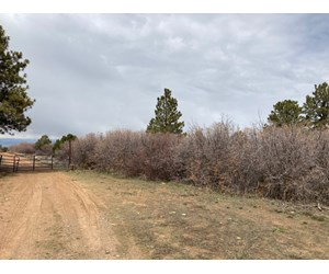 Lot For Sale, Easy Access Town, Log Hill, Montrose, Colorado