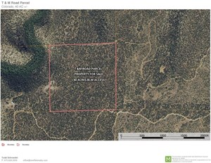 LAND FOR SALE, MOUNTAIN PROPERTY, OUTSIDE MONTROSE, CO