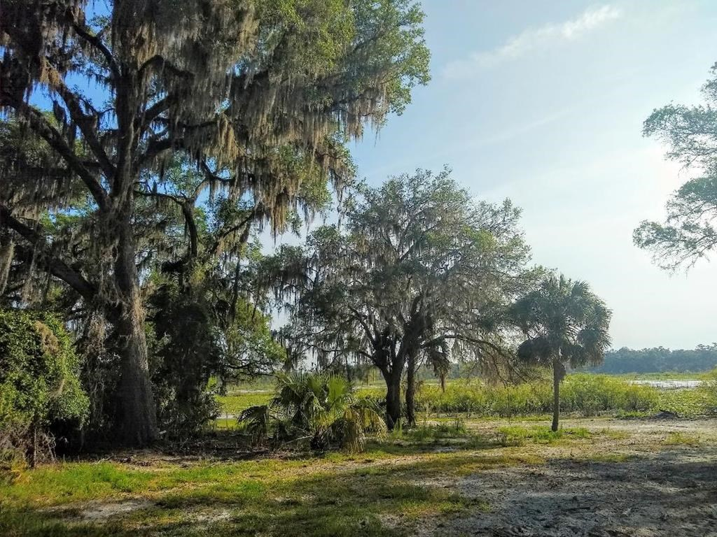 SPANISH TRACE SUBDIVISION! WATERFRONT LOT!