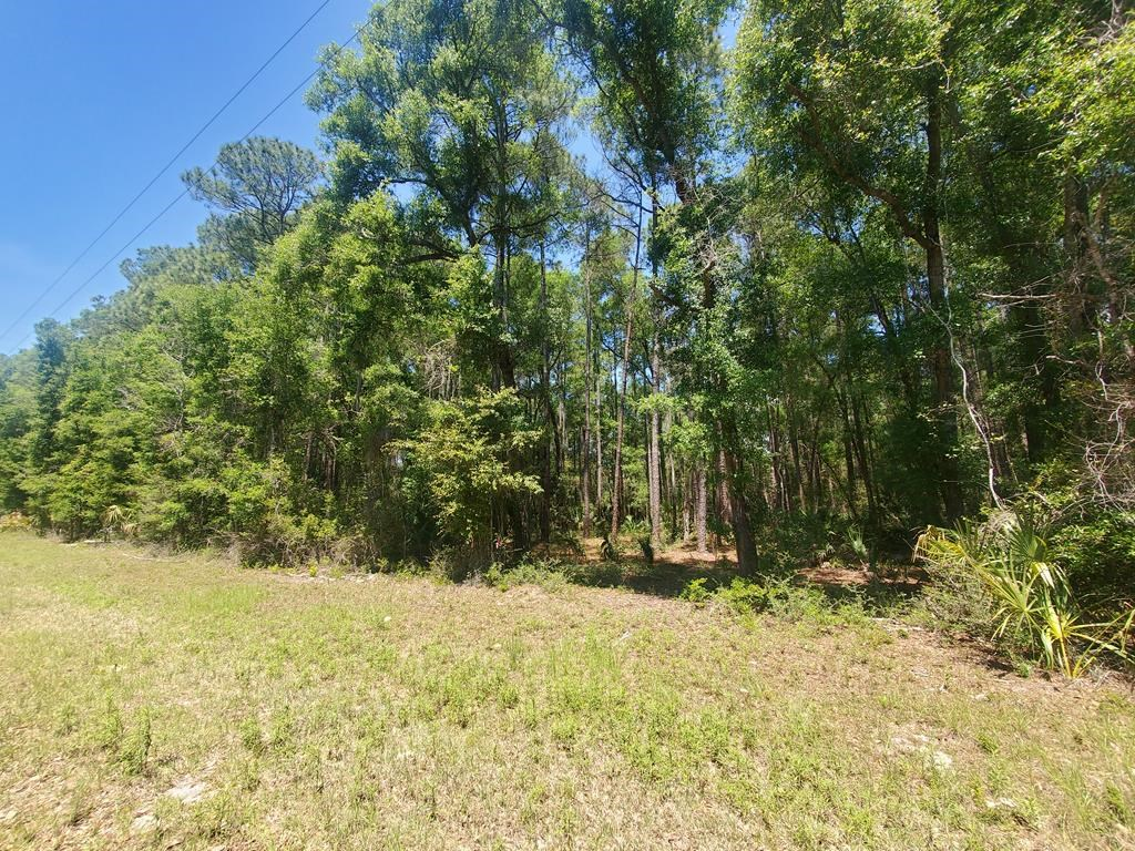 2+ ACRES IN LONG POND VIEW!