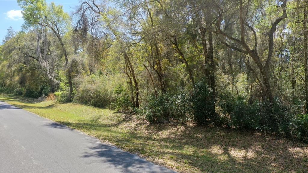 1 ACRE LOT IN HOMES ONLY SUBDIVISION!