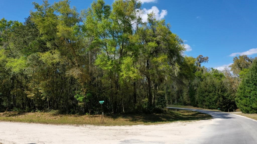 1+ ACRE LOT IN HOMES ONLY SUBDIVISION!