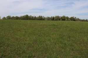 GREAT FARM LAND FOR SALE
