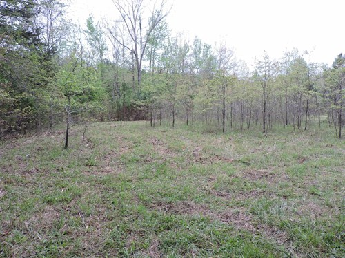 50 Wooded Acres m/l.  Joins National Forest!