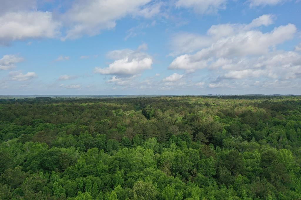14 ACRES FOR SALE IN ANDERSON COUNTY
