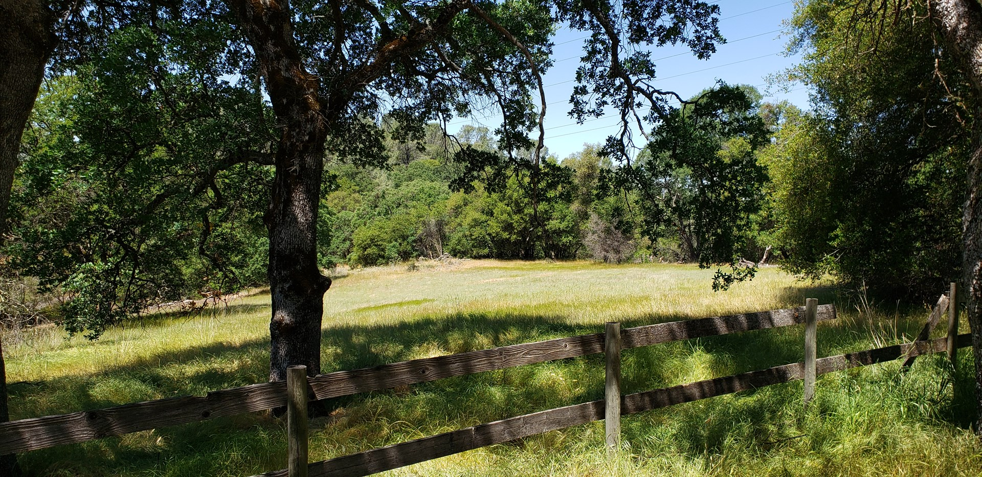 Horse Property for Sale in Northern California