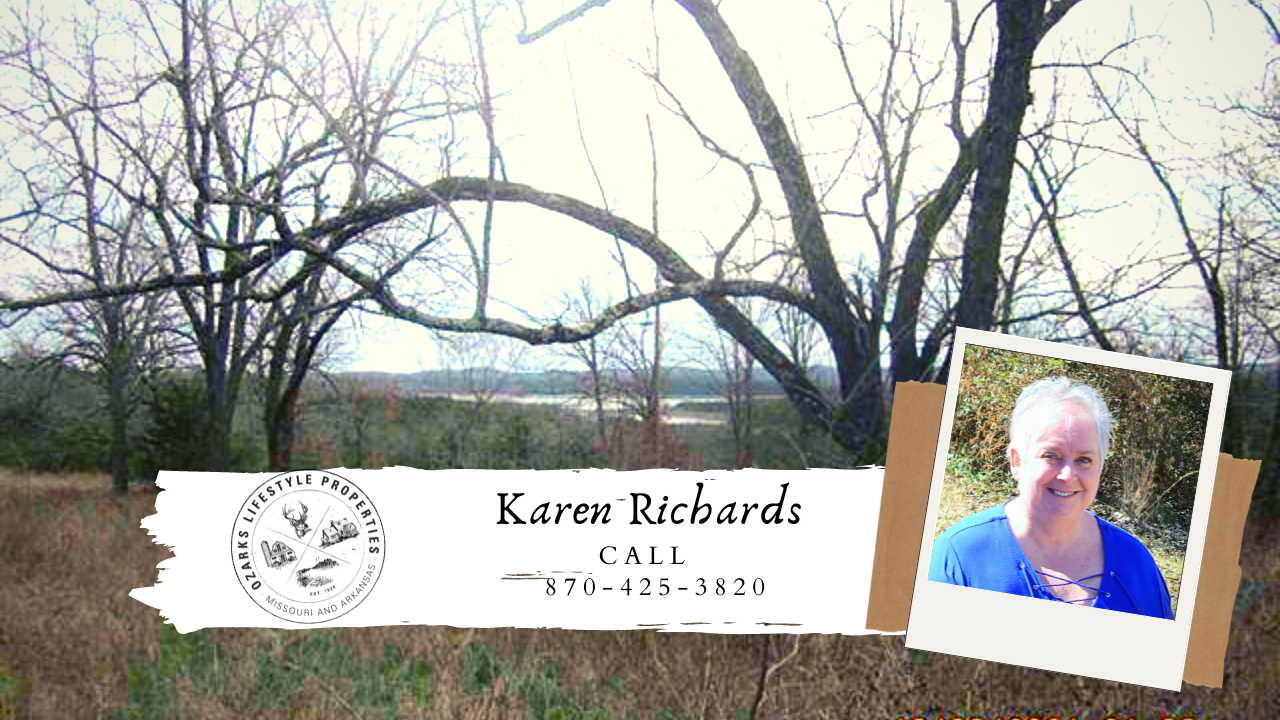 Lakeview Property for Sale in Peel, AR!