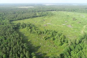 OPEN/CLEARED TIMBERLAND FOR SALE IN LITTLE RIVER CO., AR