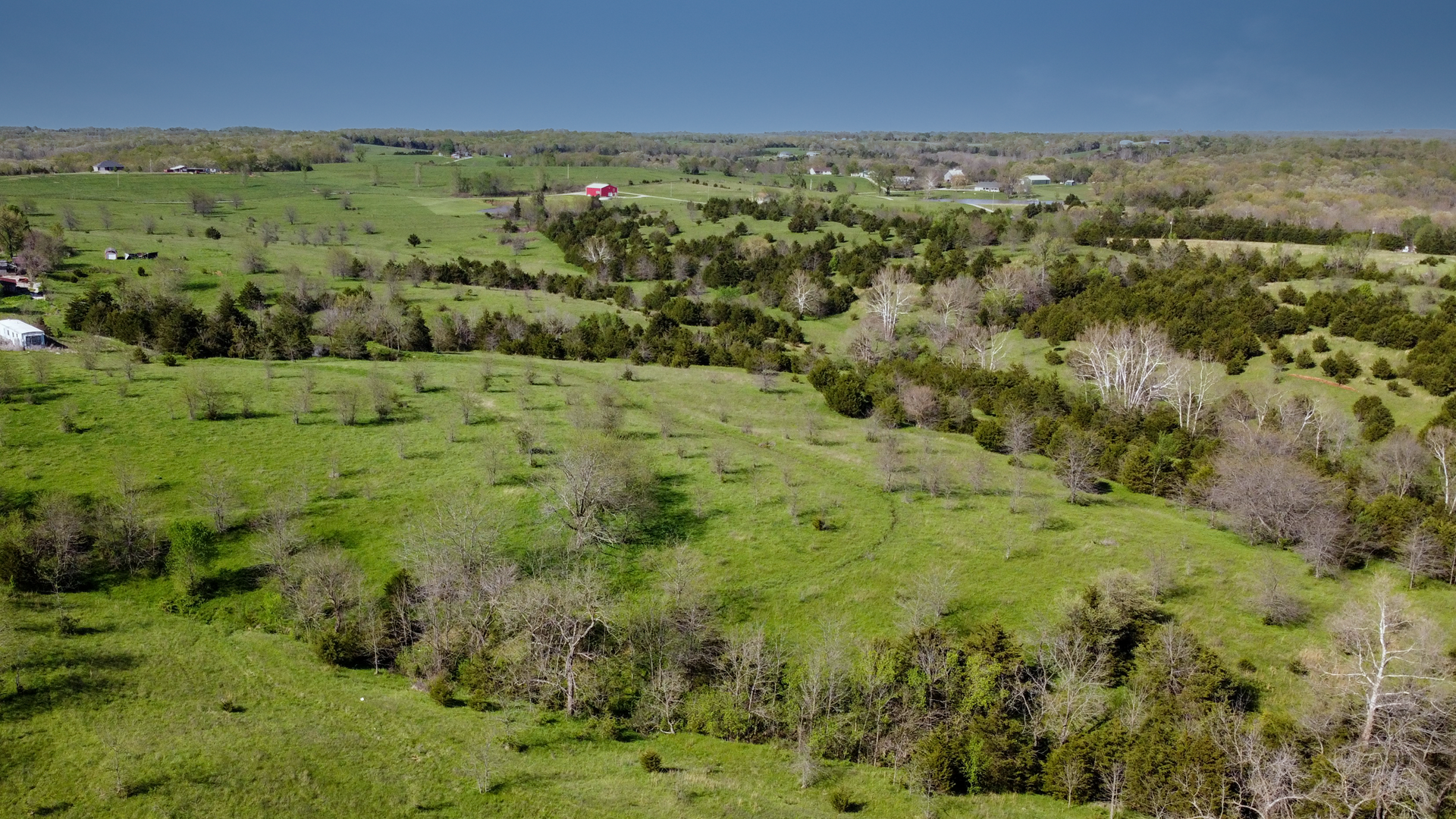 Moniteau County MO Pasture/Grass Farm with Hunting Auction