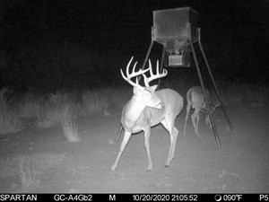 SOUTH TEXAS HUNTING RANCH / GOLDEN TRIANGLE!