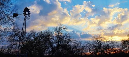 Extraordinary South Texas Hunting Ranch