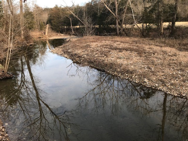 Building Land on Year Round Creek Near Bull Shoals For Sale