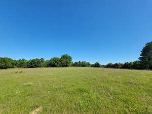 EAST TEXAS HUNTING PROPERTY HOME SITE  FOR SALE, CASS CO, TX