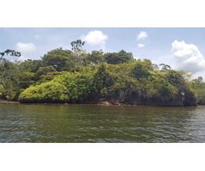 OWN A REMOTE ISLAND IN BOCAS DEL TORO PANAMA