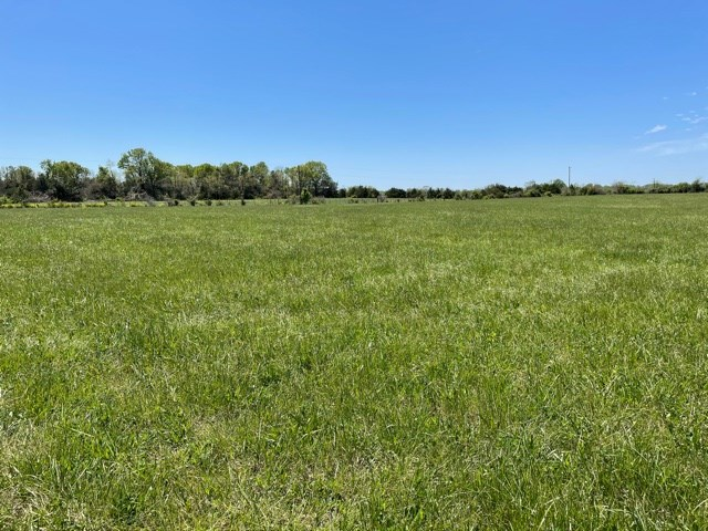 Lot for Sale in South Central Missouri