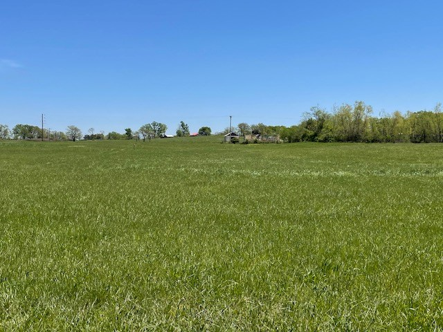 Subdivision Lot for Sale in Mountain Grove