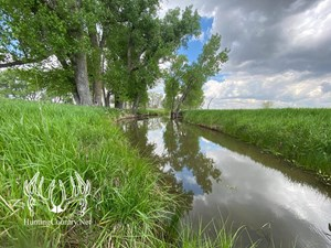 76 ACRES M/L RUSSELL COUNTY, KANSAS LAND FOR SALE