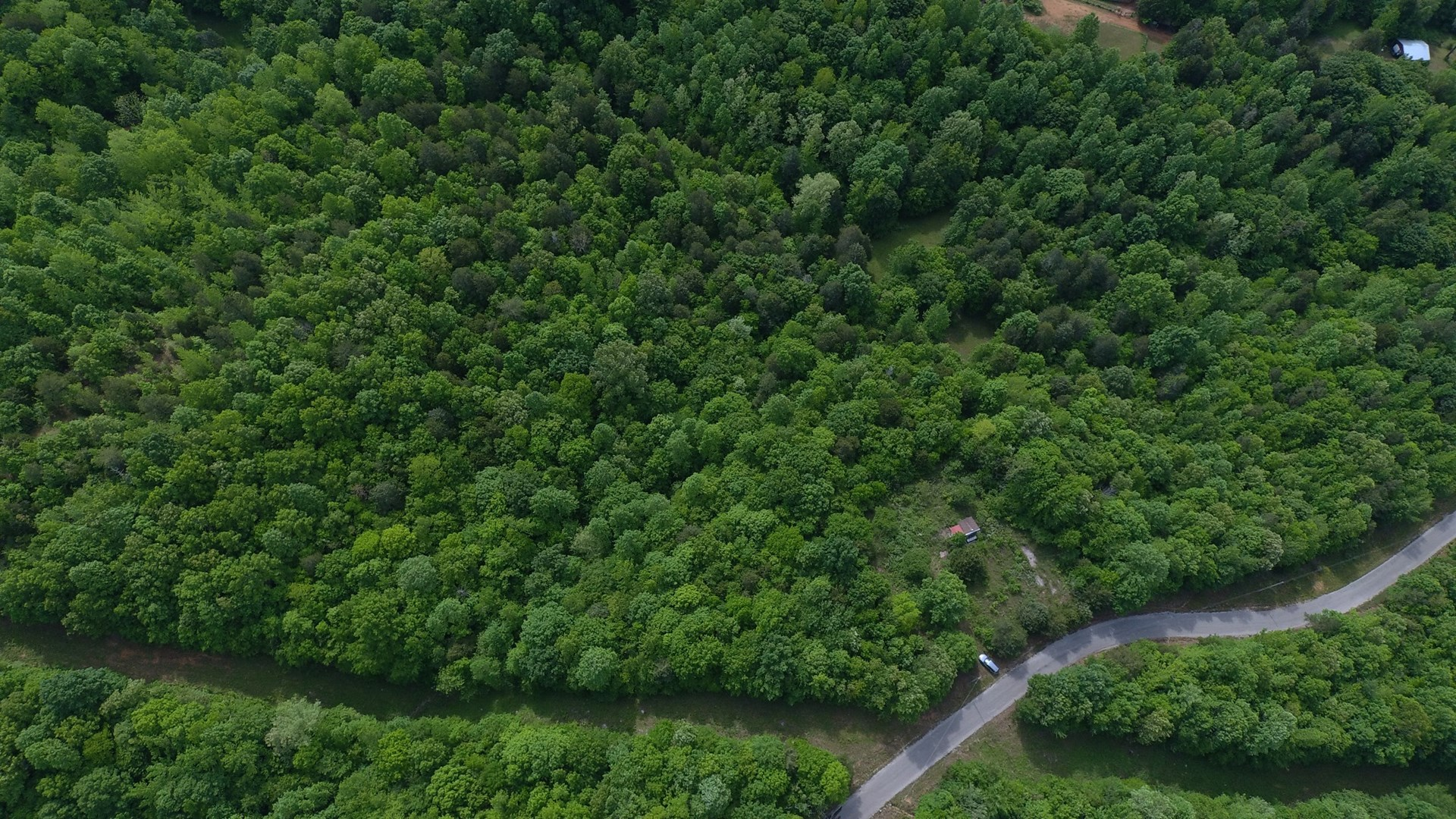 WOODED HUNTING LAND FOR SALE IN TN WITH CABIN